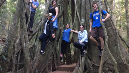 Our Group Climbing in a Strangler Fig